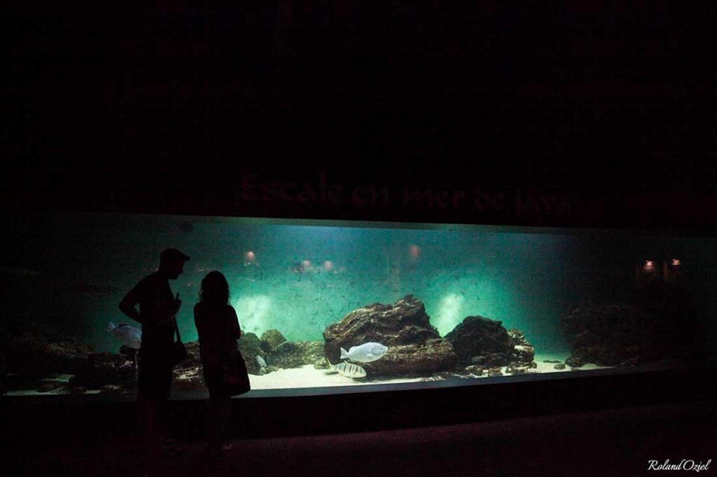 Aquarium de Vendée