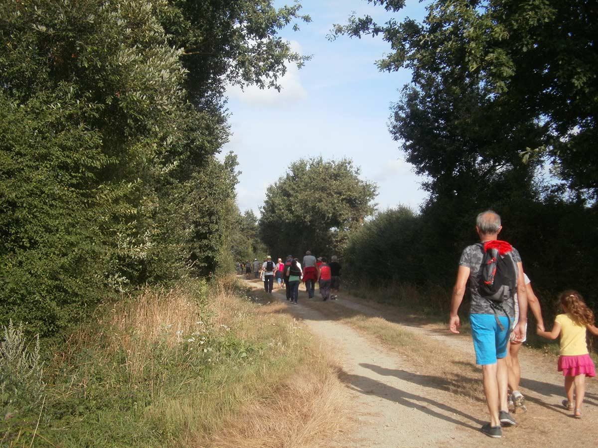 sentiers de randonnées Vendée