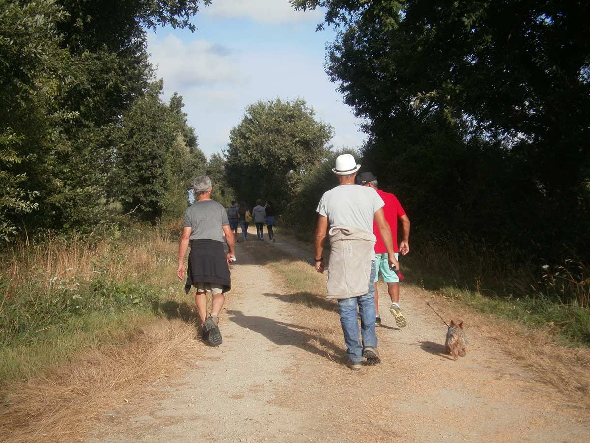 sentiers de randonnées Vendée 2