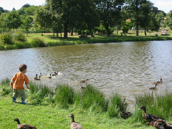 camping familial  avec étang de pêche en Vendée