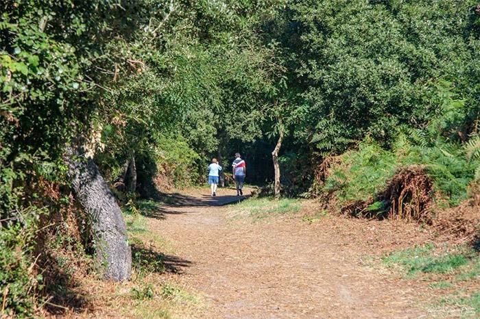 séjour dans camping avec randonnées pédestres en Vendée